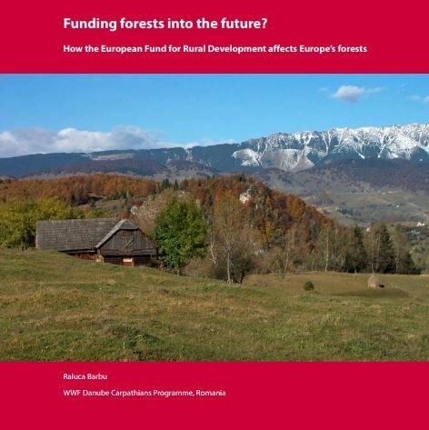 Funding forests into the future. The case of Romania.