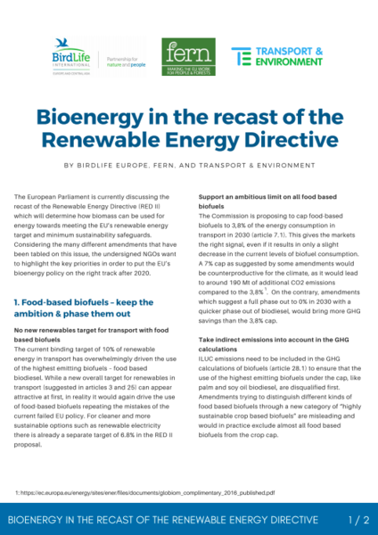 Bioenergy in the recast of the Renewable Energy Directive