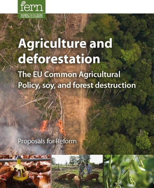 Agriculture and deforestation - Summary Report