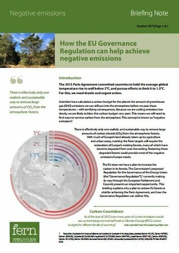 How the EU Governance Regulation can help achieve negative emissions