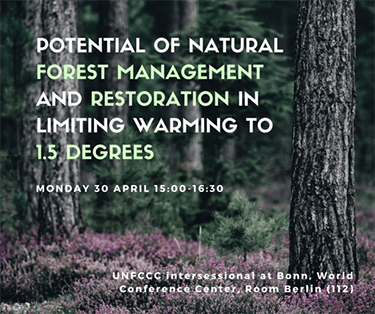 Potential of natural forest management and restoration in limiting warming to 1.5 degrees
