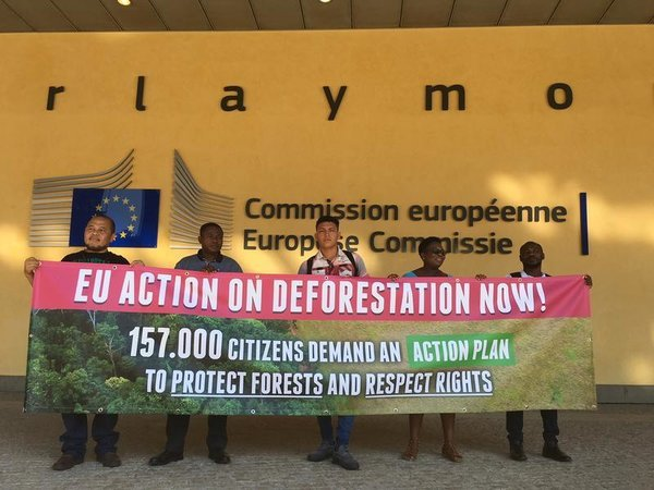 Why you should support a new European law to combat global deforestation