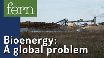 What is bioenergy? A global problem