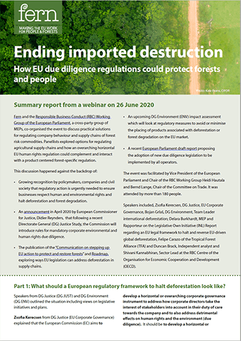 Ending imported destruction: How EU due diligence regulations could protect forests and people