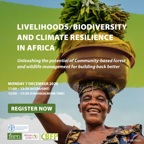 Webinar: Unleashing the potential of Community-based forest and wildlife management for building back better: livelihoods, biodiversity, and climate resilience in Africa