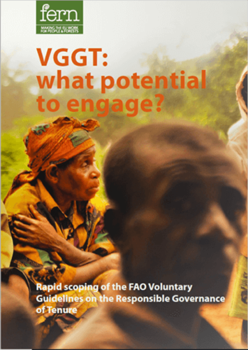 VGGT: what potential to engage?
