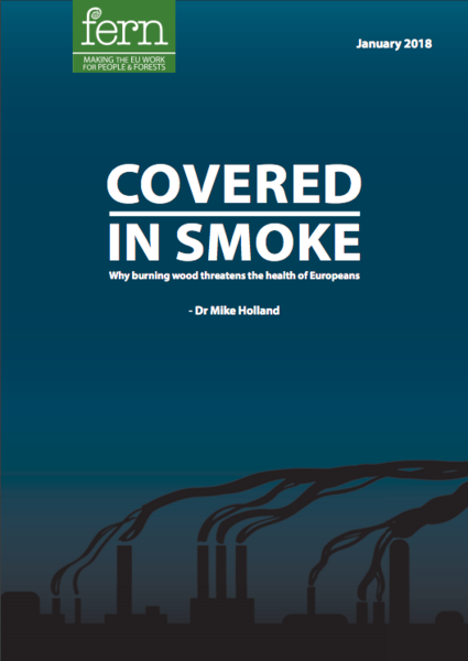 Covered in smoke: why burning biomass threatens European health