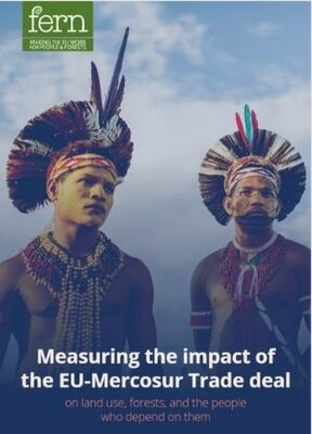 Measuring the impact of the EU-Mercosur Trade deal on land use, forests, and the people who depend on them.