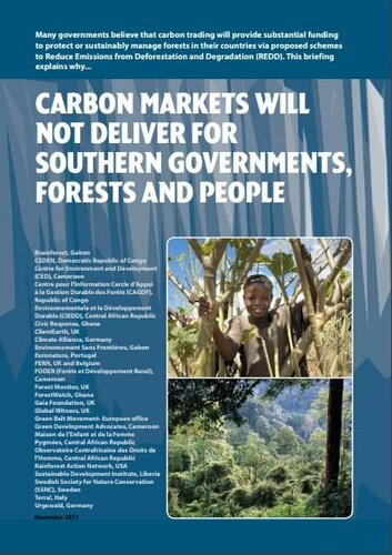 Why carbon markets will not deliver for Southern governments, forests and people