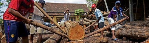 EU holds its ground on legality standards for Indonesian timber