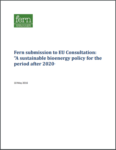 "Fern submission to EU Consultation: ""A sustainable bioenergy policy for the period after 2020"""