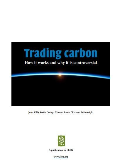 Trading carbon: how it works and why it is controversial