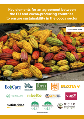 Key elements for an agreement between the EU and cocoa-producing countries, to ensure sustainability in the cocoa sector