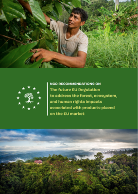 NGO recommendations on the future EU Regulation to address the forest, ecosystem, and human rights impacts associated with products placed on the EU market