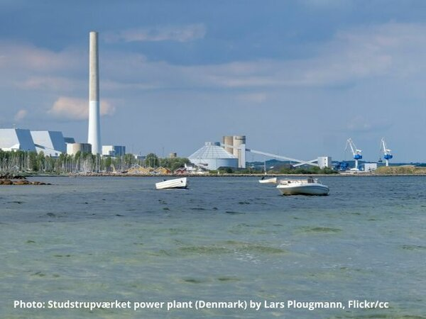 Danish state aid case illustrates Commission's biomass blind spot