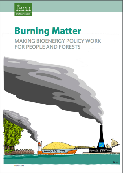 Burning Matter: Making Bioenergy Policy Work for People and Forests