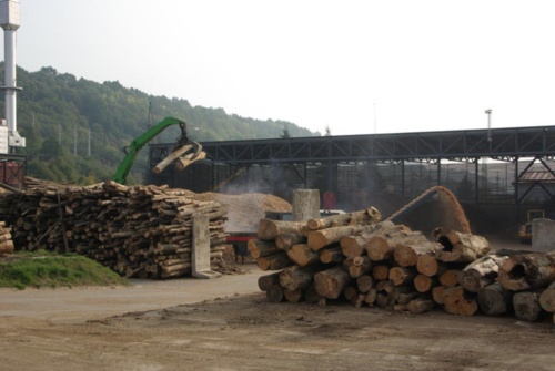 Lawsuit seeks to remove forest biomass from EU's renewable energy directive