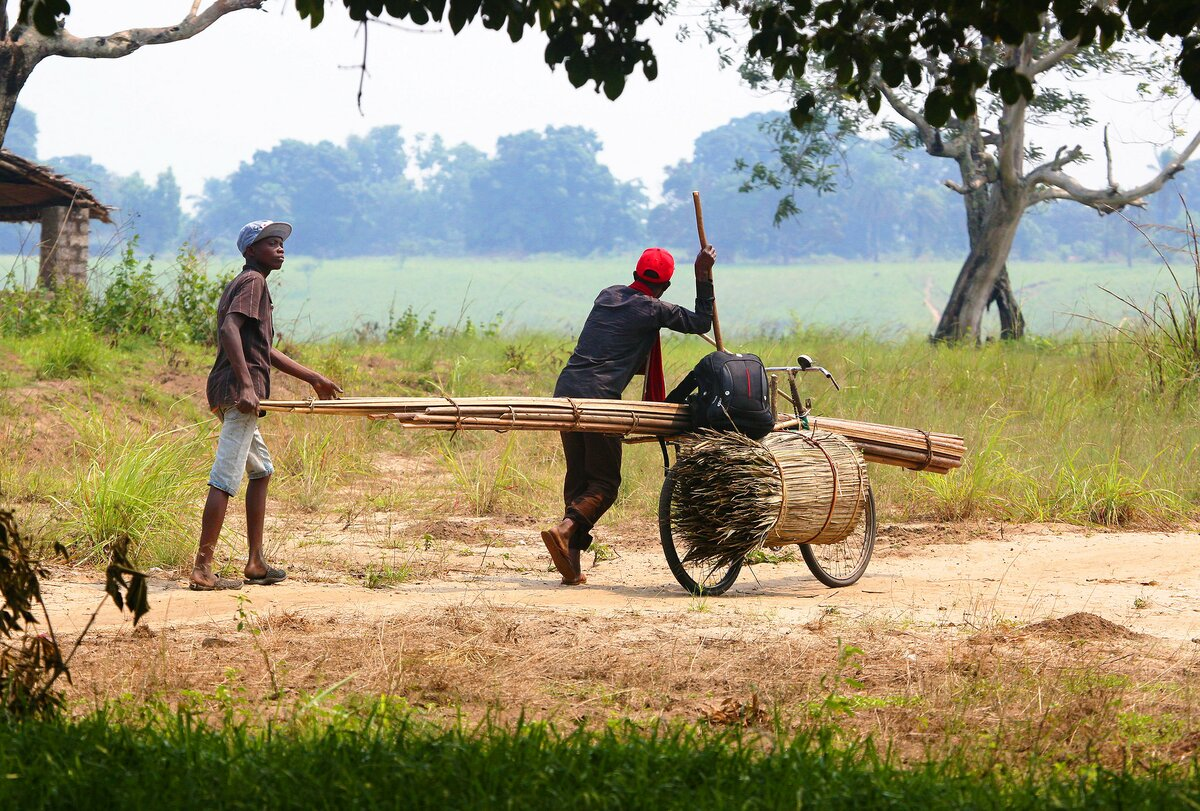 Bike Carrying Canes Democratic Republic of Congo