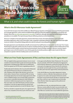 The EU-Mercosur trade agreement: What is it, and what could it mean for forests and human rights?
