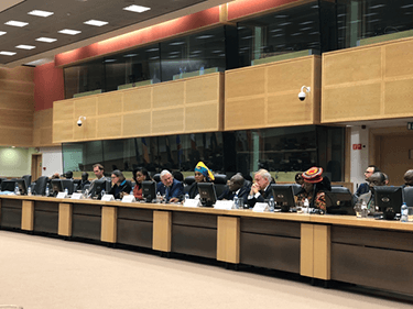 Congo Basin meeting in Brussels: time for stronger action