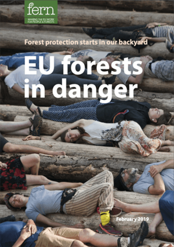EU forests in danger: Forest protection starts in our backyard