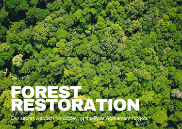 Forest restoration - Our secret weapon for achieving the Paris Agreement targets
