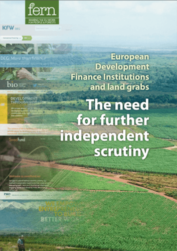 European Development Finance Institutions and land grabs: The need for further independent scrutiny