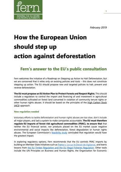How the European Union should step up action against deforestation - Fern's submission to the EU Consultation on deforestation