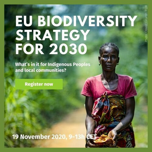 EU Biodiversity Strategy for 2030: What's in it for indigenous peoples and local communities?