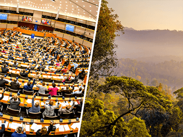 EU Development Budget: will the Council build on Parliament's bold stance?
