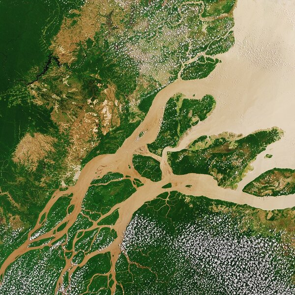 Amazon river aerial shot