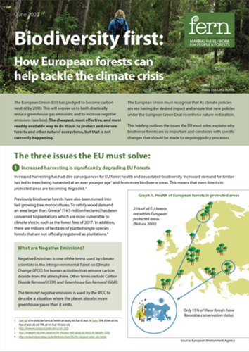 Biodiversity first: How European forests can help tackle the climate crisis