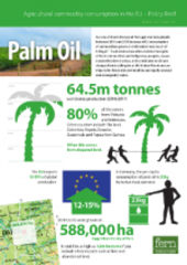 Palm oil briefing paper