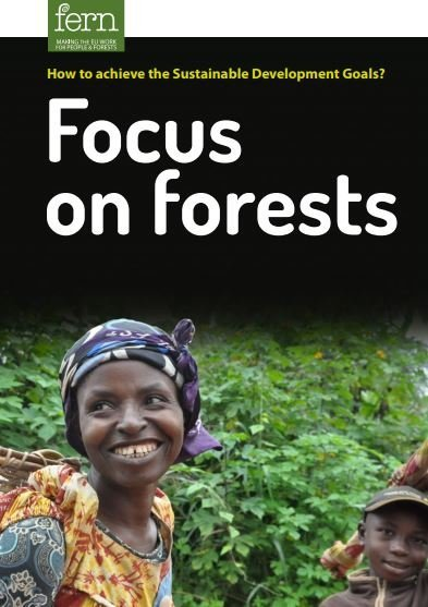 How to achieve the Sustainable Development Goals? Focus on forests