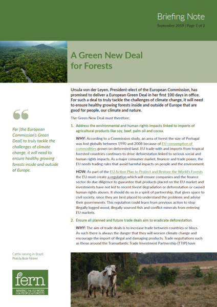 A Green New Deal for Forests