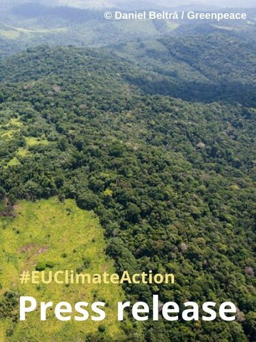 EU member states support EU regulatory measures to tackle deforestation