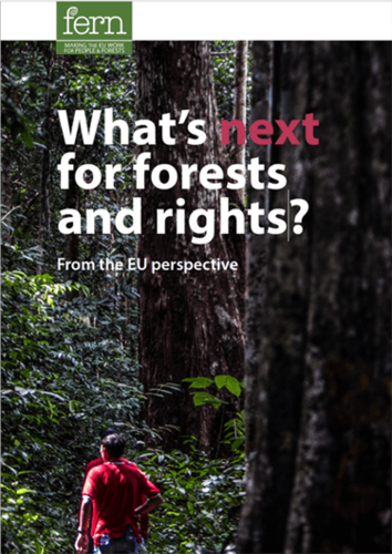 What's next for forests and rights?